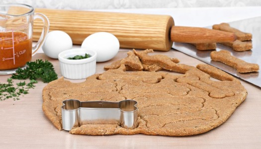 Time to Bake: Pumpkin & Peanut Butter Dog Treats Recipe