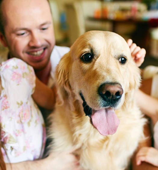 Spoiling Family Dog With Cuddles