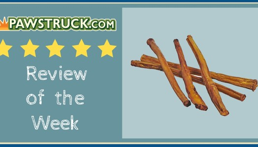 Review of the Week: 7″ Straight Bully Stick (XL Thickness)