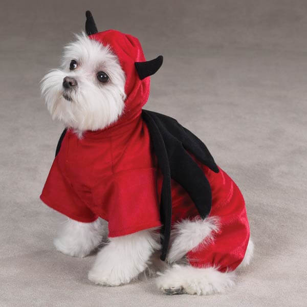 devil costume for dogs