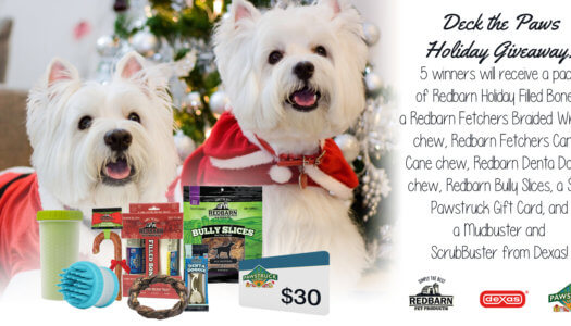 Deck the Paws Dog Holiday Giveaway
