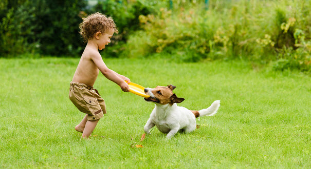 Playing outside with your dog