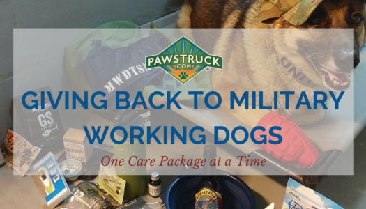 Giving Back to Military Working Dogs: Pawstruck Donates 200 Tins of Ruff Relief Balm