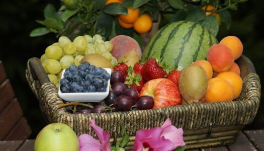 A Quick Guide to Feeding Fruits To Your Dogs