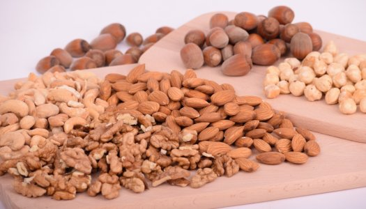 Is Your Dog Going Bonkers For Nuts?