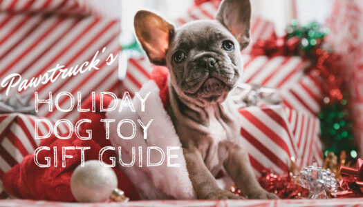 Holiday Dog Toy Gift Guide