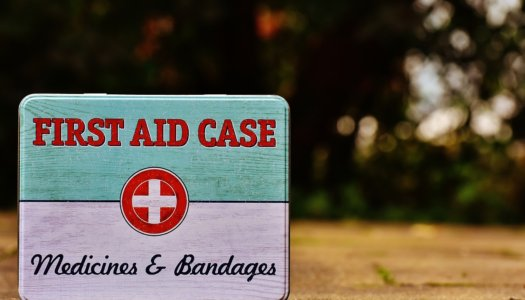 The Ultimate Guide To Emergency Dog First Aid