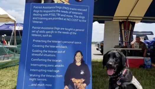 Rescue Spotlight: Patriot Assistance Dogs