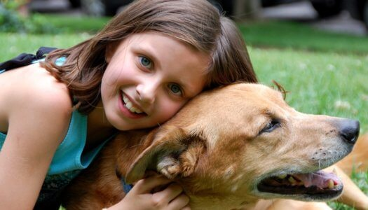 5 Essential Ways To Keep Kids and Pets Happy and Safe