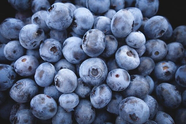 Are blueberries safe for dogs to eat?