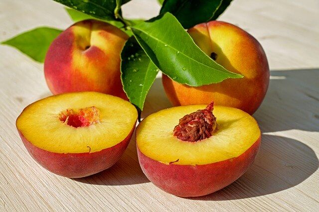 Summer Fruit Peaches Safe for Dogs