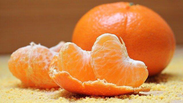 Summer Fruit Orange Safe for Dogs to Eat